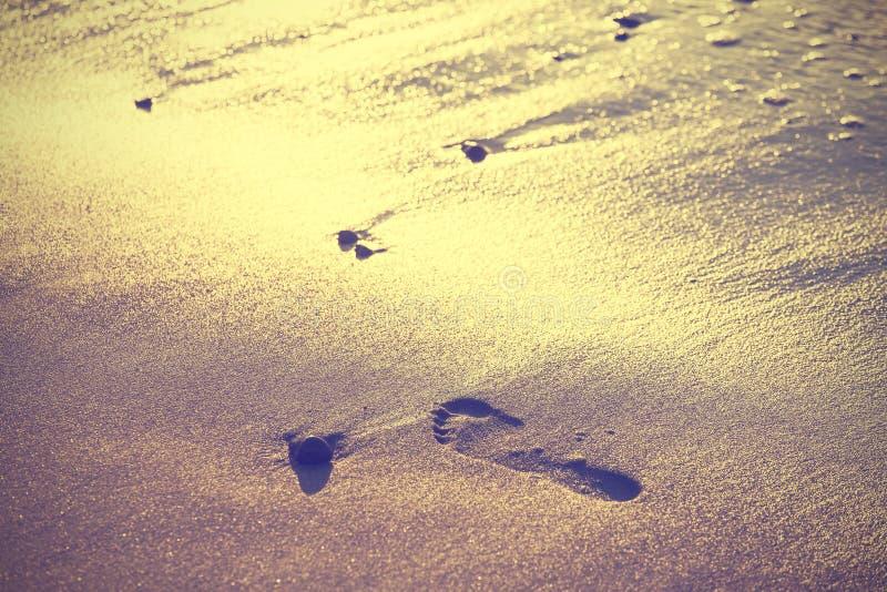 Fondo d'annata della natura, orma sulla sabbia immagini stock libere da diritti