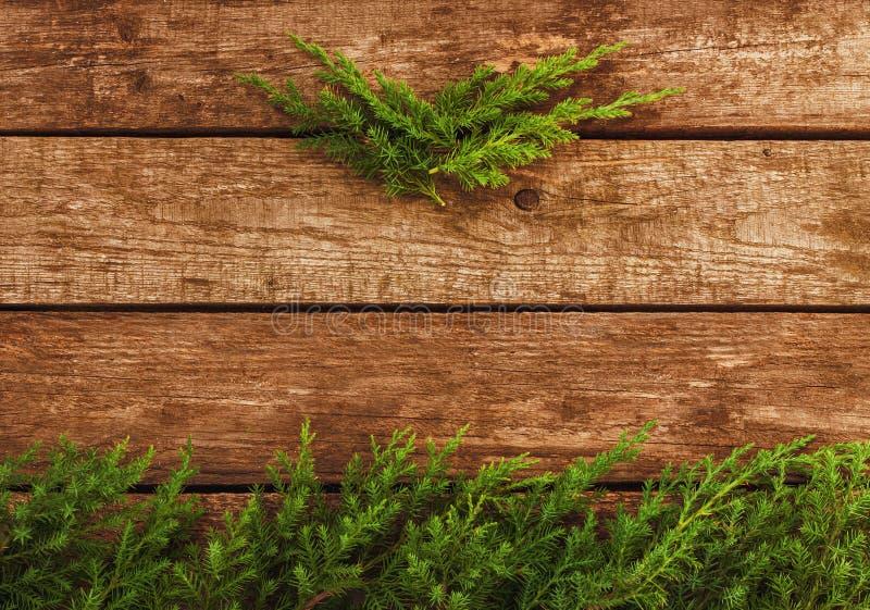 Fondo d'annata di natale - il vecchi legno e pino si ramificano immagini stock