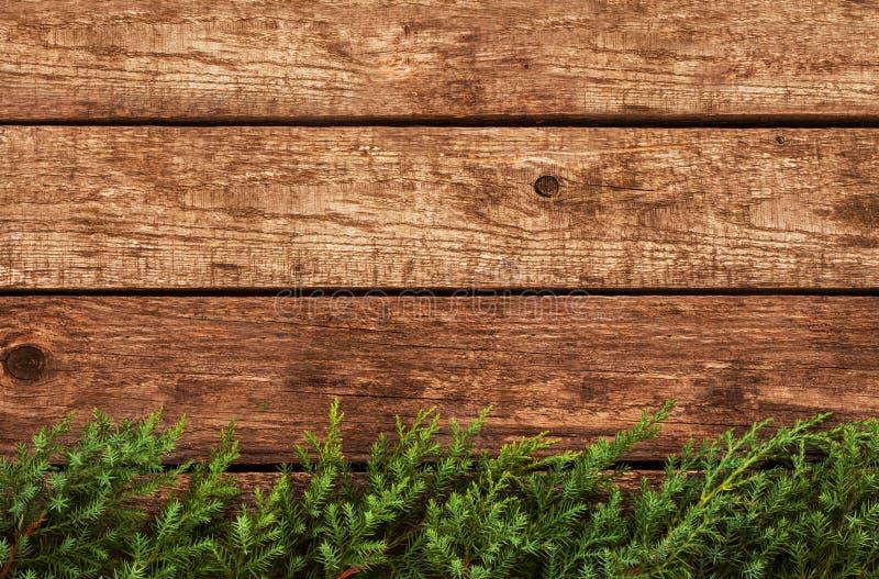 Fondo d'annata di natale - il vecchi legno e pino si ramificano fotografia stock libera da diritti