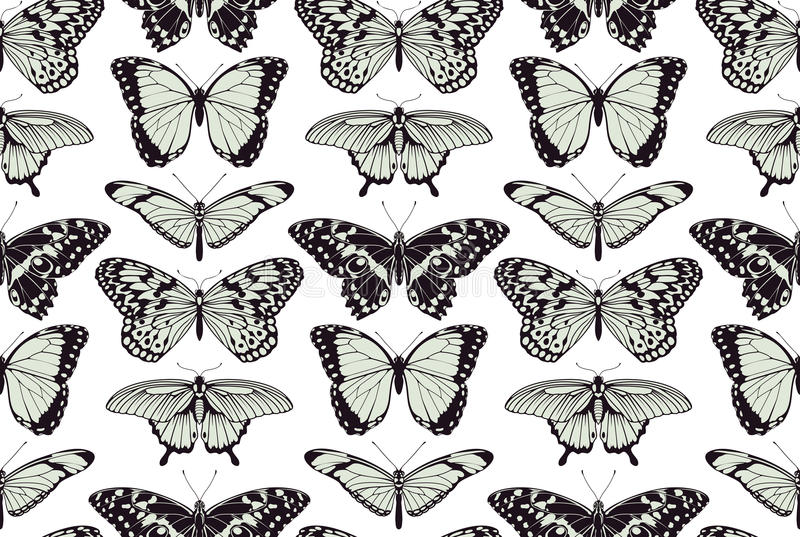 Fondo d'annata senza cuciture della farfalla illustrazione di stock
