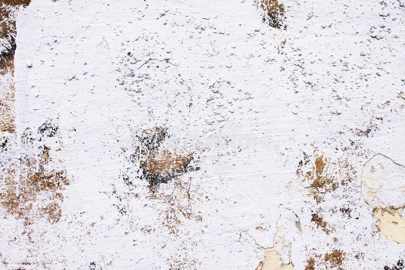 Fondo dalla parete bianca dell'alta pietra dettagliata del frammento fotografie stock libere da diritti