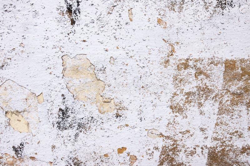 Fondo dalla parete bianca dell'alta pietra dettagliata del frammento immagine stock libera da diritti