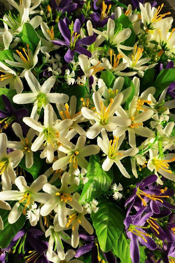 Fondo de flores p?rpuras y blancas brillantes con las hojas verdes imagen de archivo libre de regalías