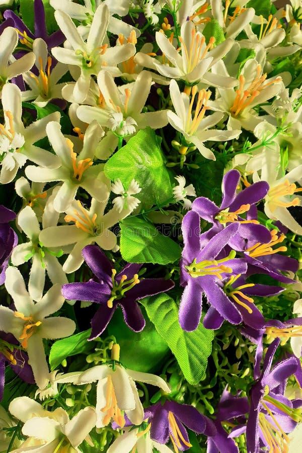 Fondo de flores p?rpuras y blancas brillantes con las hojas verdes foto de archivo