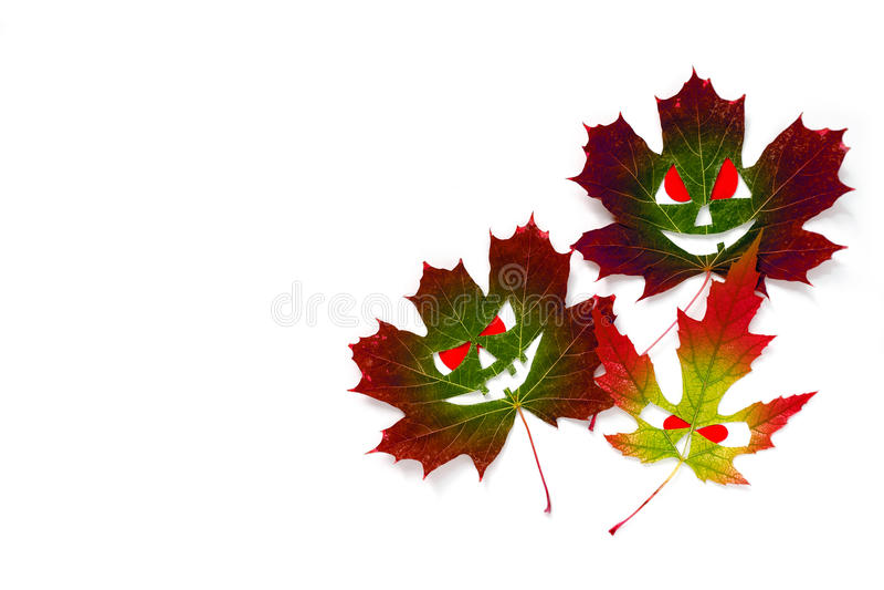 Fondo de Halloween - hojas de arce coloreadas del otoño bajo la forma de caras con los ojos rojos Fondo blanco Aislado imagen de archivo libre de regalías
