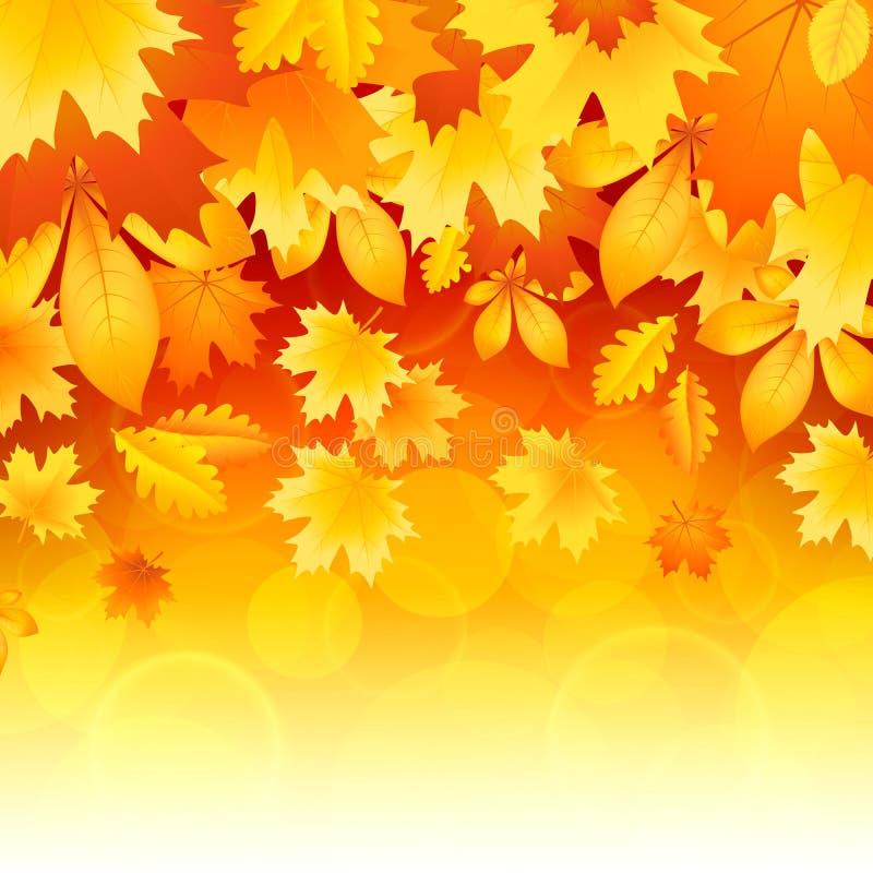 Fondo de hojas ilustración del vector