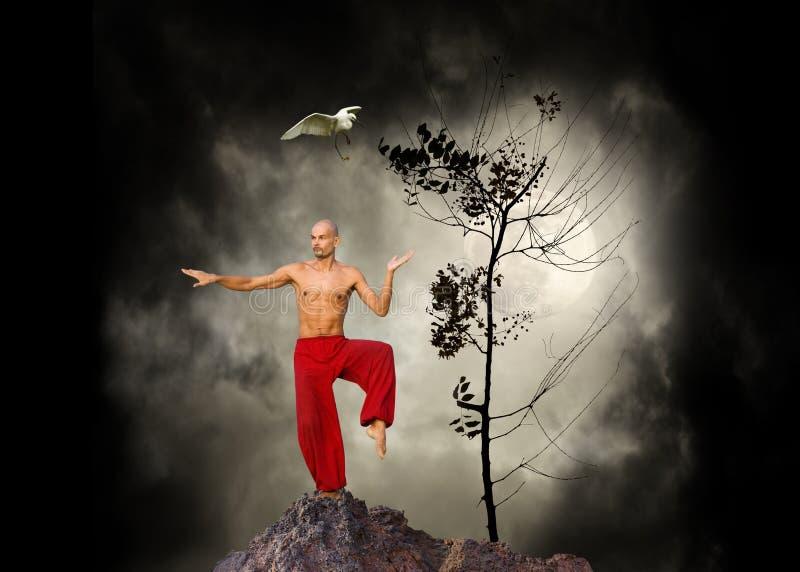 Fondo de Kung Fu de los artes marciales imagenes de archivo