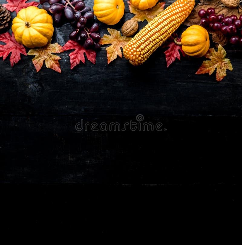 Fondo de la acción de gracias con la fruta y verdura imágenes de archivo libres de regalías