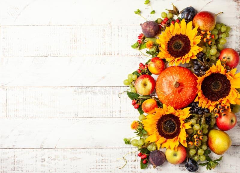 Fondo de la acción de gracias con las calabazas, las frutas y las flores de otoño imagen de archivo