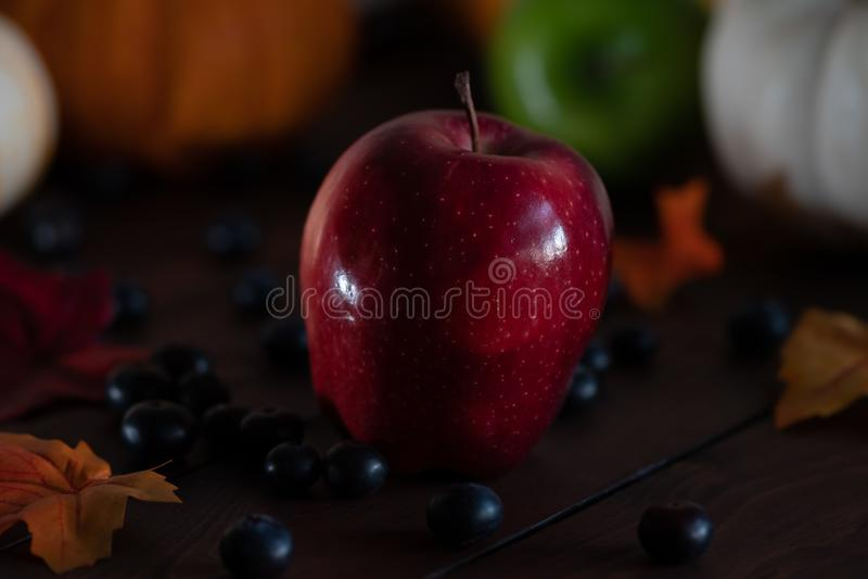Fondo de la acción de gracias con las calabazas, las manzanas y las bayas en una tabla marrón fotos de archivo