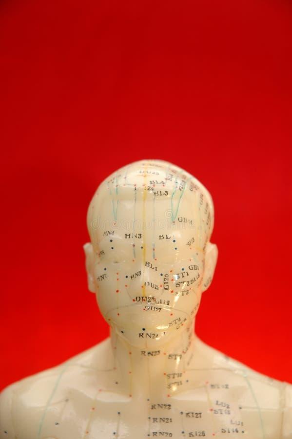 Fondo de la acupuntura imágenes de archivo libres de regalías