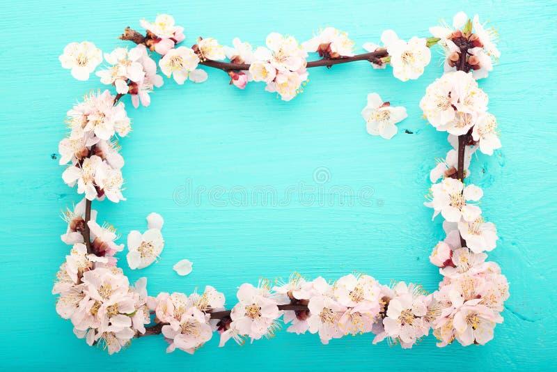 Fondo de la boda Ramificación floreciente de la cereza foto de archivo