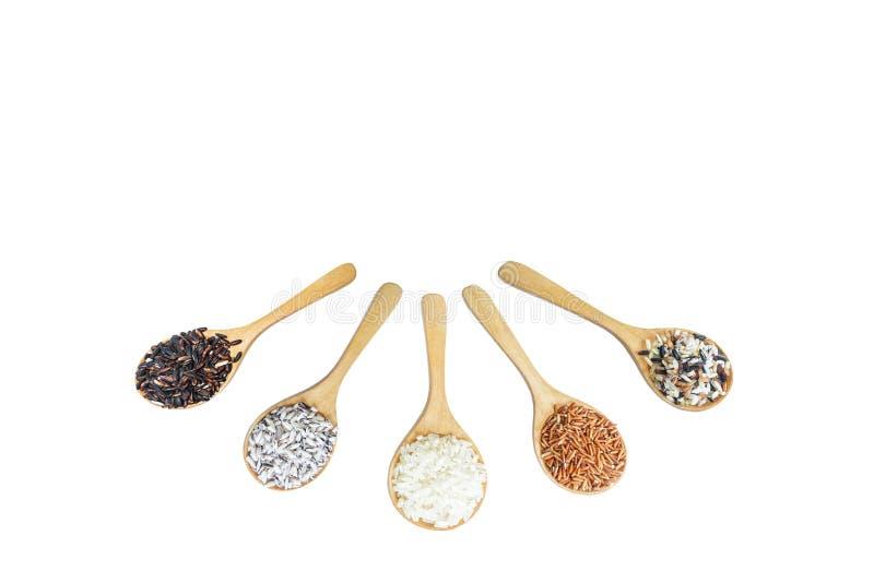 Fondo de la comida con de variedad del arroz mezcla del arroz imagen de archivo libre de regalías
