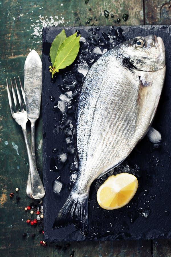 Fondo de la comida con los pescados y el vino fotos de archivo libres de regalías