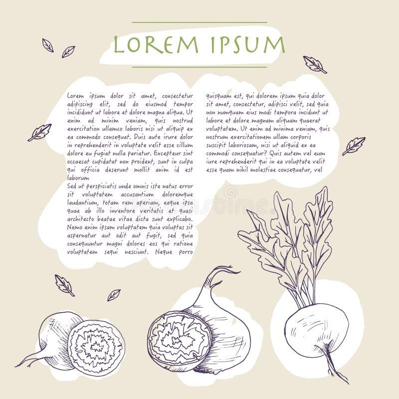 Fondo de la comida con la plantilla social exhausta de los medios de la mano de la verdura de raíz de la remolacha con los movimi libre illustration