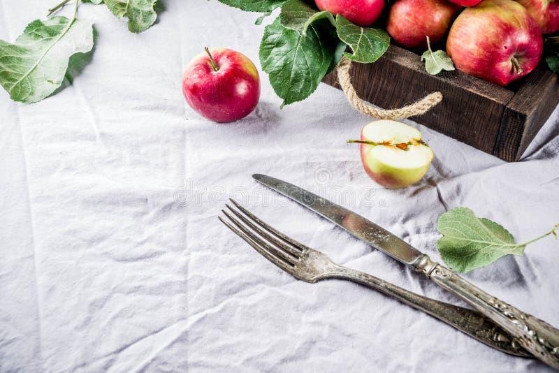 Fondo de la comida del otoño fotos de archivo