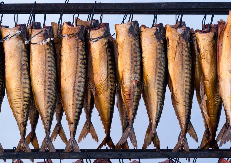 Fondo de la comida de pescados de la caballa ahumada imagen de archivo