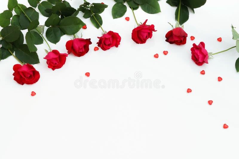 Fondo de la composición del día de tarjeta del día de San Valentín Ramo de rosas rojas hermosas foto de archivo
