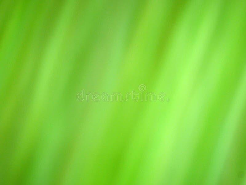 Download Fondo De La Ecología De La Hierba Verde Foto de archivo - Imagen de verde, cubo: 44855930