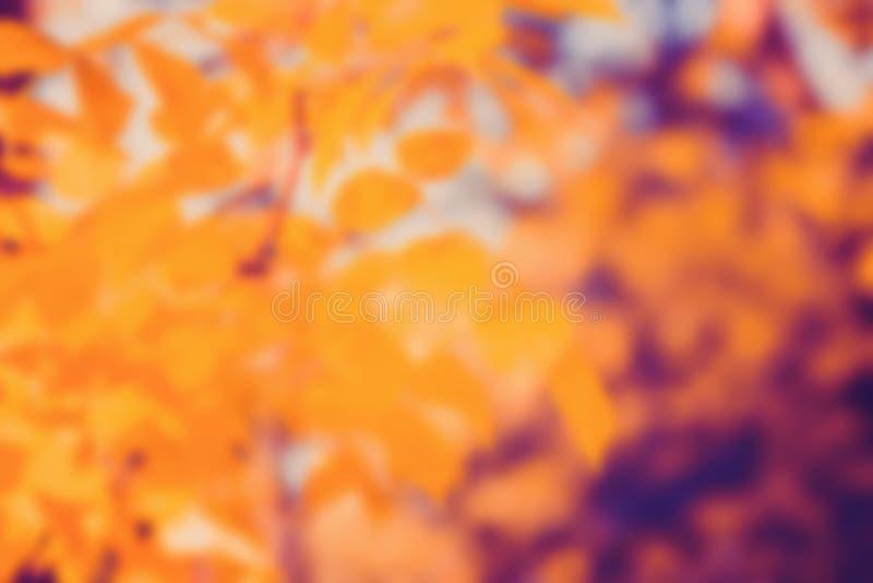 Fondo de la falta de definición de la naturaleza del otoño foto de archivo libre de regalías
