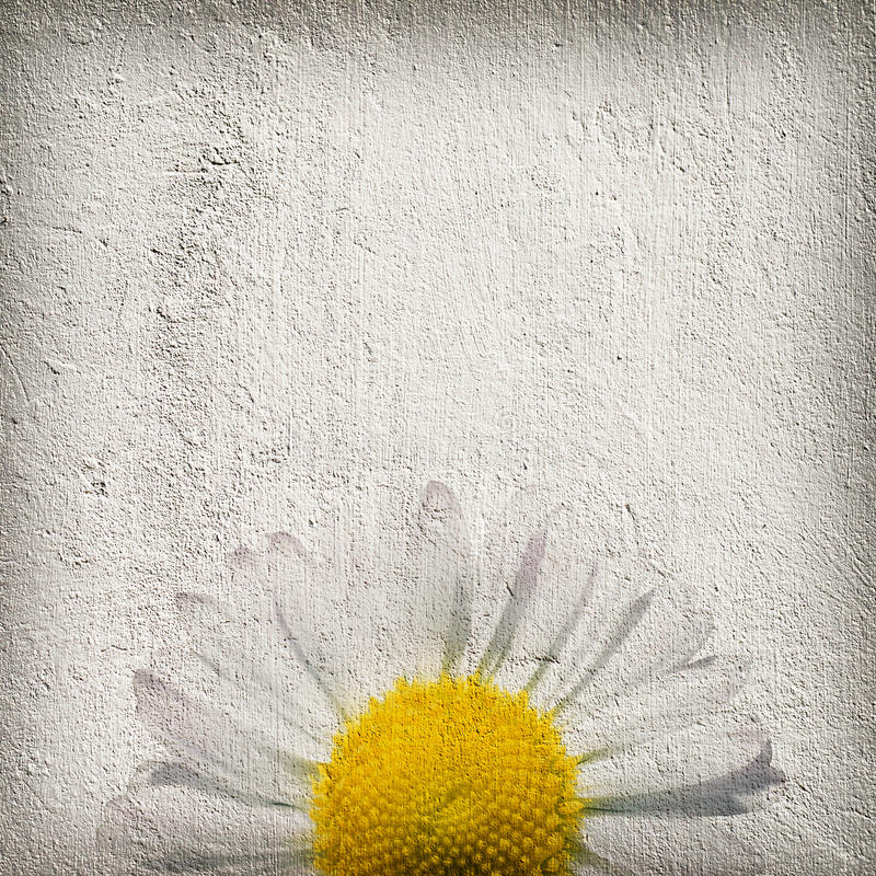 Fondo de la flor de Grunge imagenes de archivo