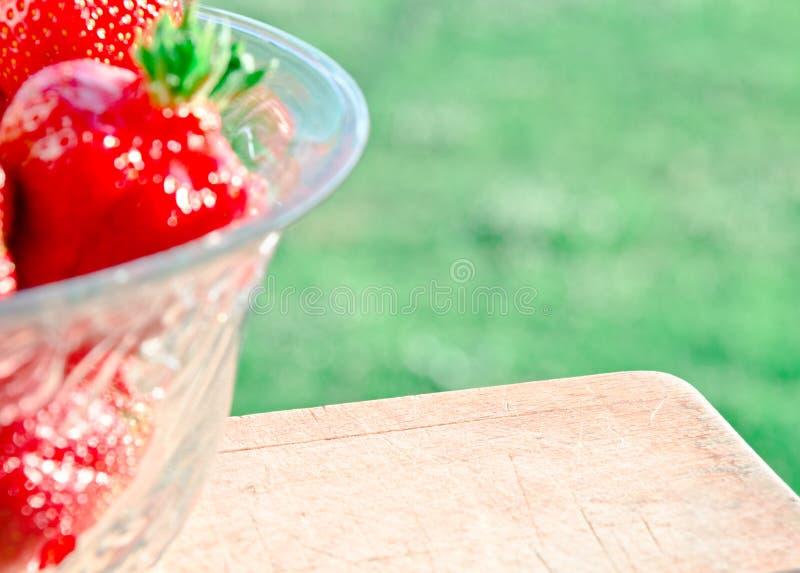 Fondo de la fresa, día soleado imagen de archivo libre de regalías