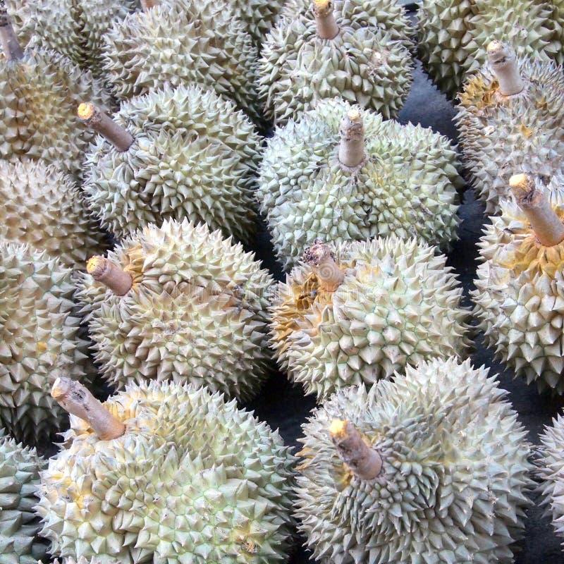 Fondo de la fruta del Durian foto de archivo