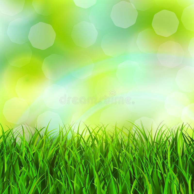 Fondo de la hierba stock de ilustración
