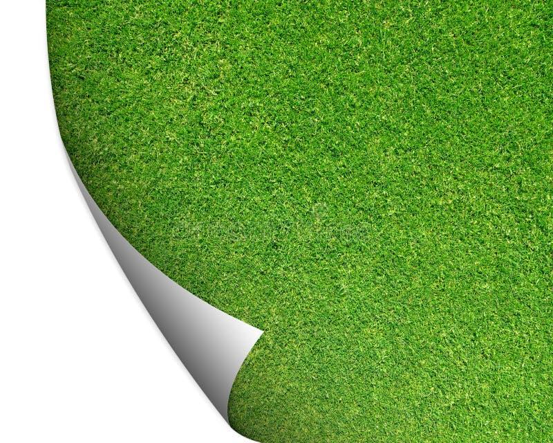 Fondo de la hierba del corte del verde con la esquina dada vuelta fotografía de archivo