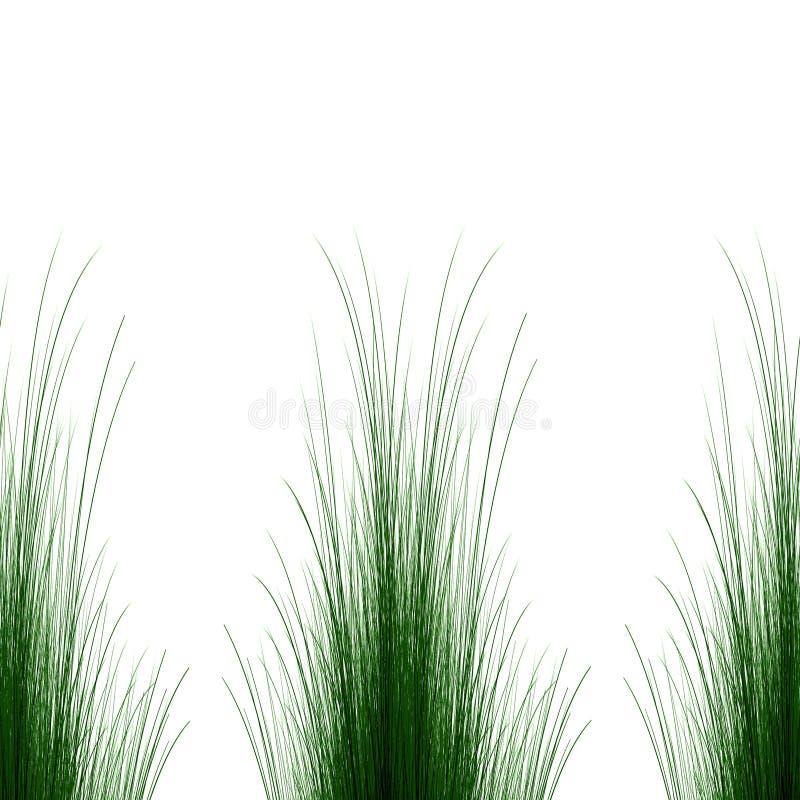 Fondo de la hierba verde ilustración del vector