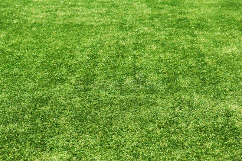 Fondo de la hierba verde del campo. imágenes de archivo libres de regalías