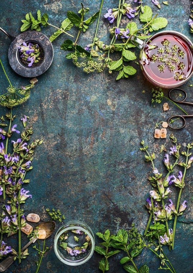 Fondo de la infusión de hierbas con las diversas hierbas curativas y flores frescas, tamiz y taza de té, visión superior fotos de archivo