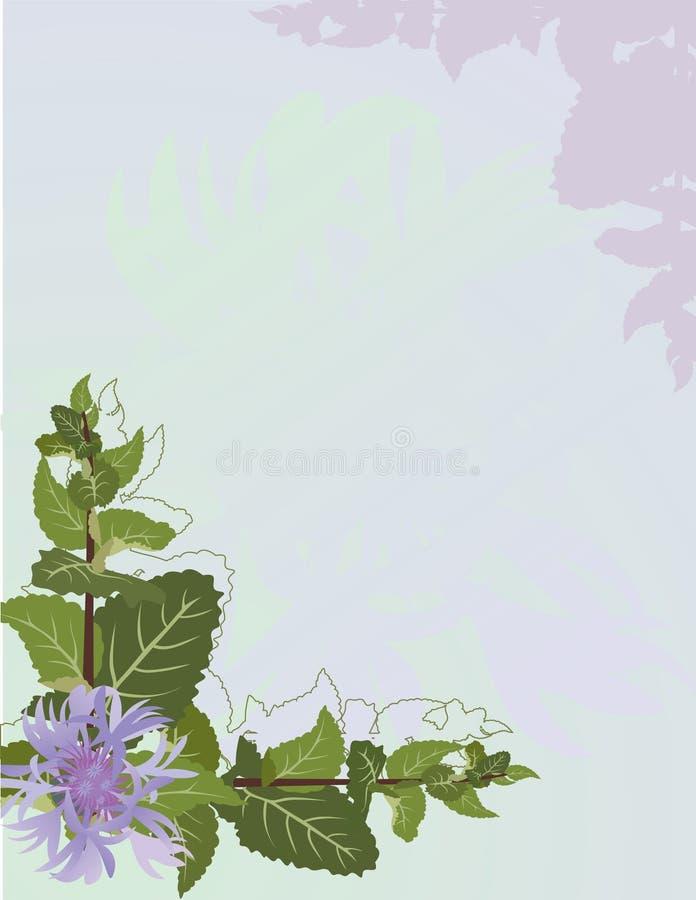 Fondo de la menta y del cornflower ilustración del vector