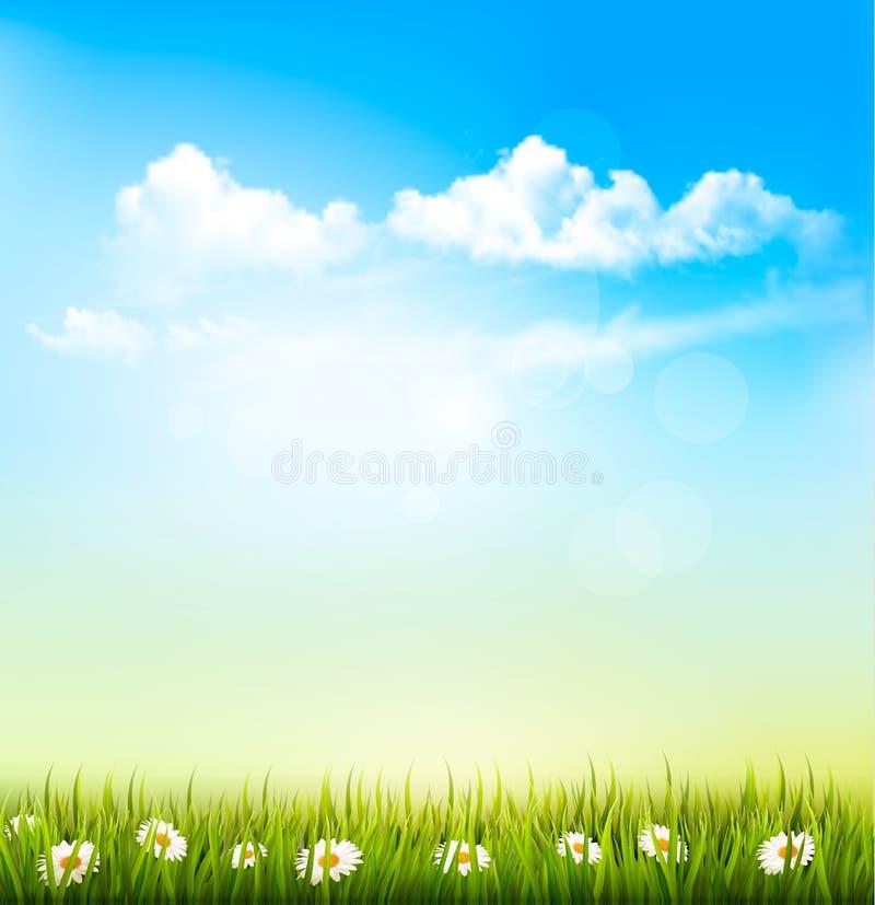 Fondo de la naturaleza de la primavera con una hierba verde y un cielo azul stock de ilustración