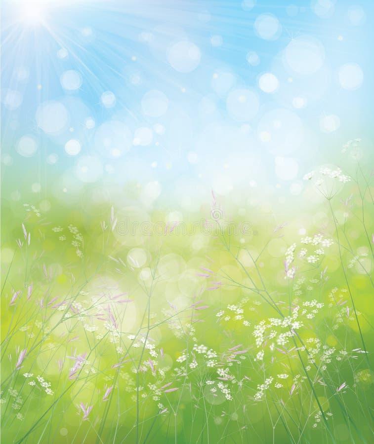 Fondo de la naturaleza de la primavera del vector libre illustration