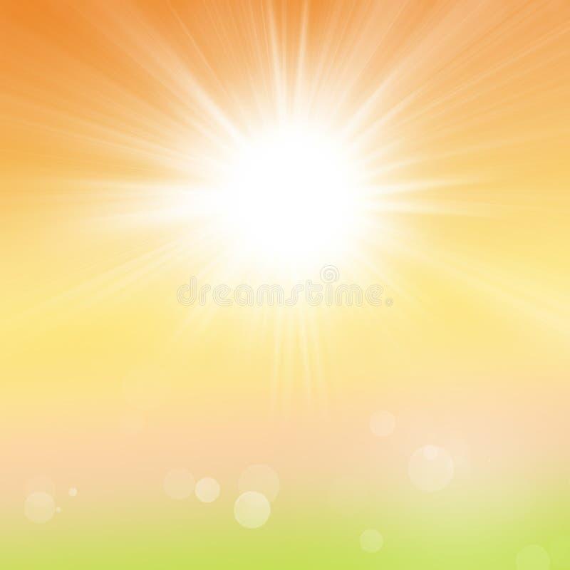 Fondo de la naturaleza del verano de la primavera con luz del sol de la hierba verde y los rayos borrosos de Sun stock de ilustración