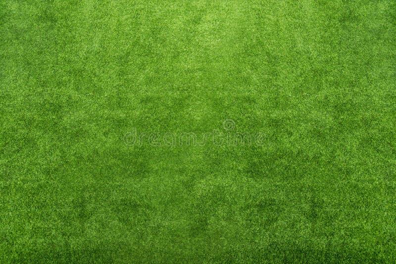 Fondo de la naturaleza y textura abstractos de la hierba verde hermosa fotografía de archivo
