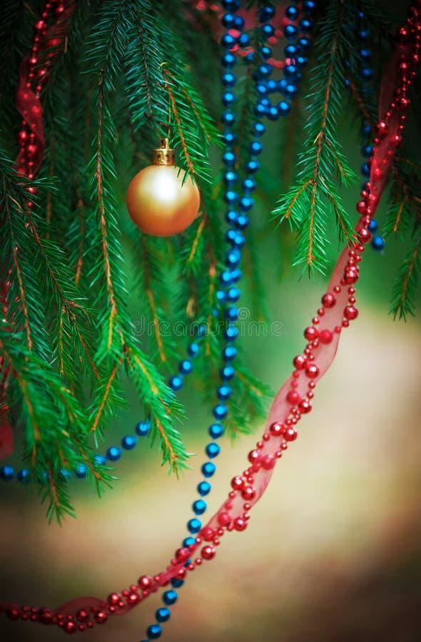 Fondo de la Navidad con la gota de la decoración en la rama del abeto fotografía de archivo libre de regalías