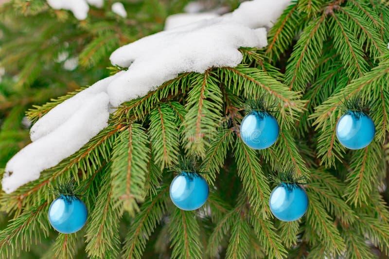 Fondo de la Navidad con las bolas azules de la decoración y nieve en brunch verde del árbol de pino imagen de archivo libre de regalías