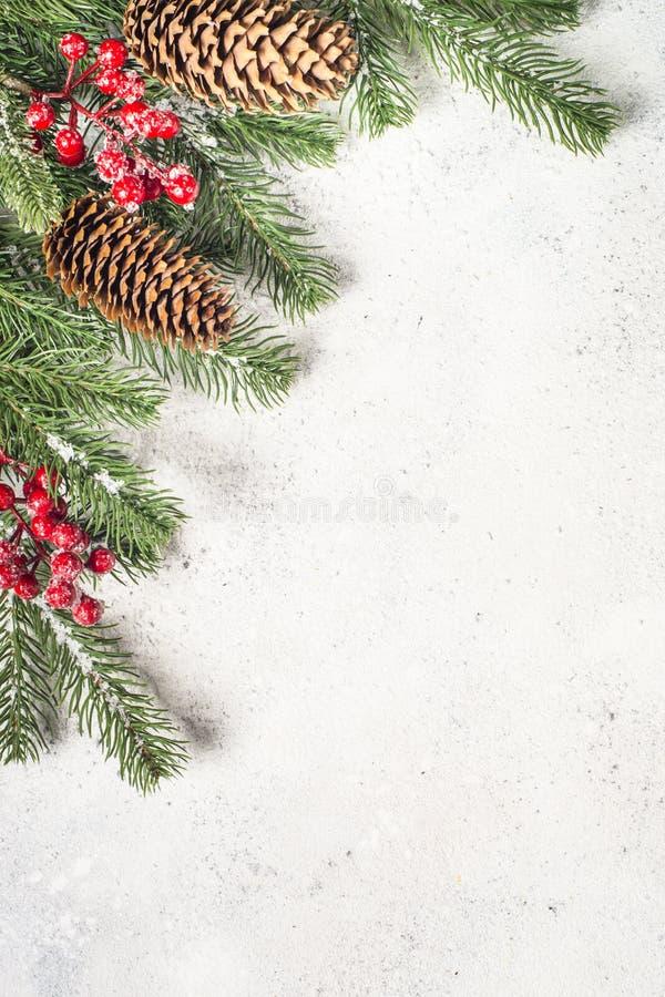 Fondo de la Navidad flatlay con brunch del árbol de abeto y decoros rojos imagenes de archivo