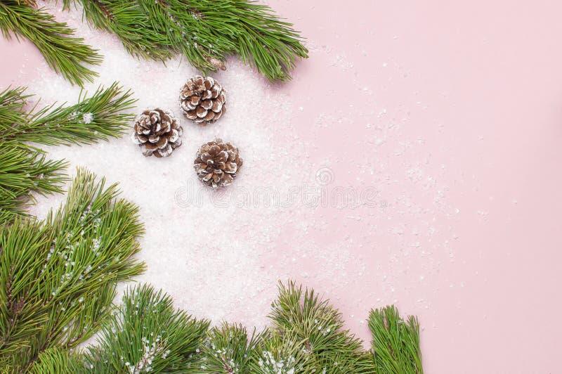 Fondo de la Navidad, ramas verdes del pino, conos adornados con nieve en fondo rosado nevoso Composición creativa con la frontera imágenes de archivo libres de regalías