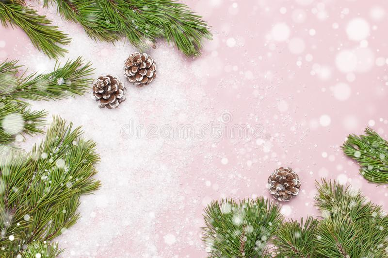 Fondo de la Navidad, ramas verdes del pino, conos adornados con nieve en fondo rosado nevoso Composición creativa con la frontera foto de archivo