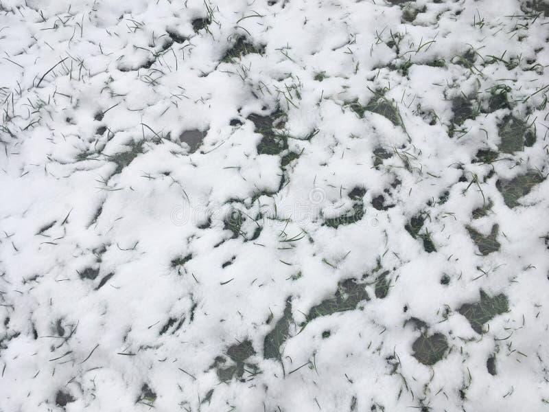 Fondo de la nieve, textura abstracta blanca Copie el espacio Opinión de alto ángulo Diseño del invierno fotos de archivo libres de regalías