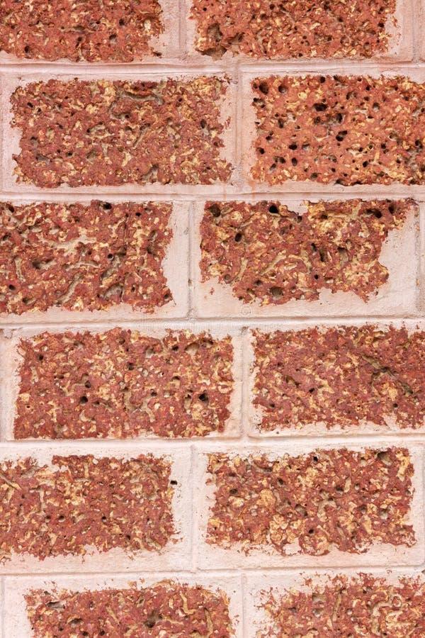 Fondo de la pared de la laterita de la textura fotografía de archivo libre de regalías