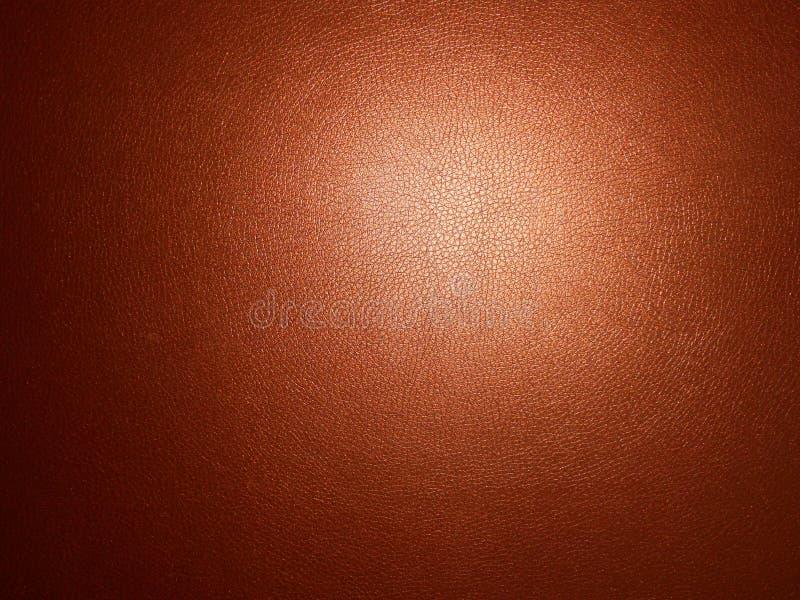 La textura de la piel. fotografía de archivo