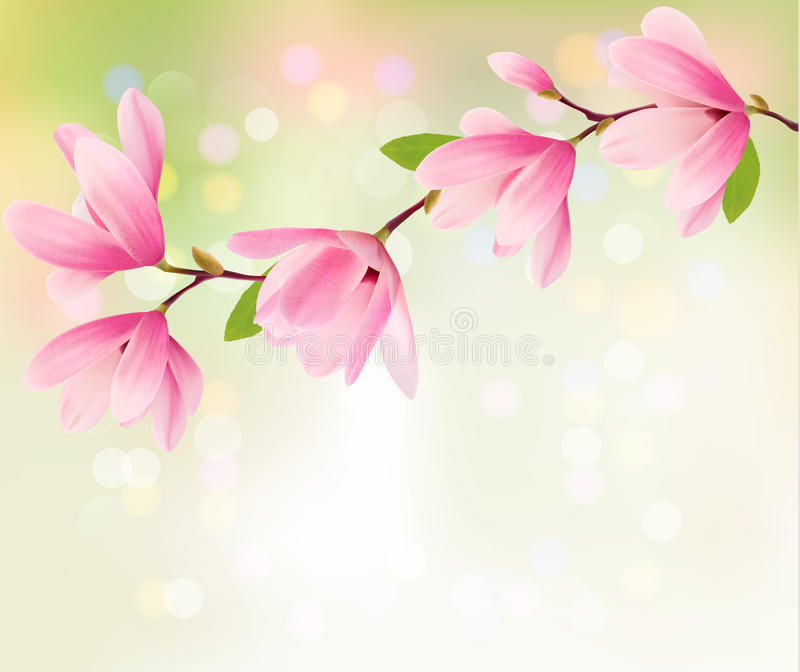 Fondo de la primavera con el brunch del flor de flores rosadas ilustración del vector