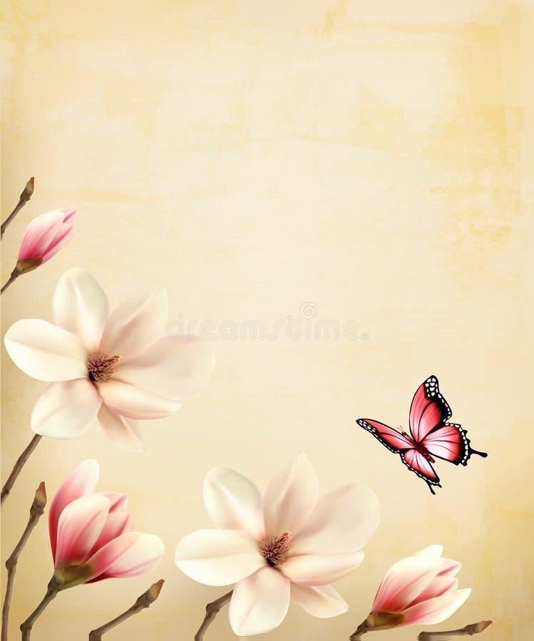 Fondo de la primavera con las ramas hermosas de la magnolia ilustración del vector