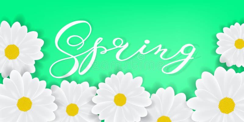 Fondo de la primavera con palabra writening de la primavera de las letras de la mano, las margaritas blancas o los gerbers libre illustration