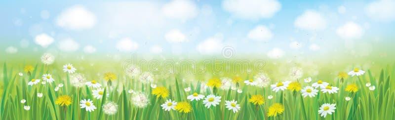 Fondo de la primavera de la naturaleza del vector stock de ilustración