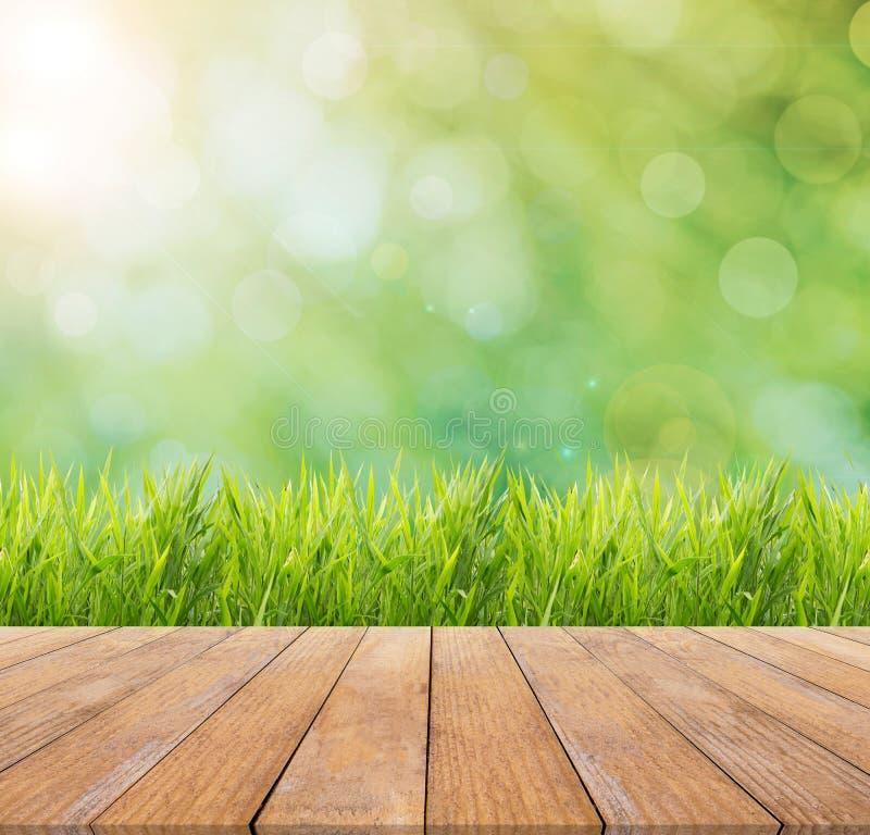 Fondo de la primavera o de la naturaleza del verano y del extracto y piso de madera fotografía de archivo libre de regalías